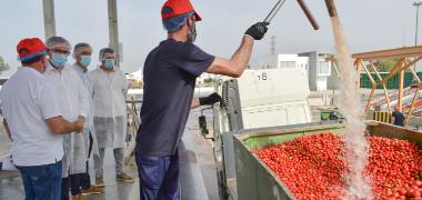 El alcalde visita la planta de tomate industrial más grande de España ubicada en la pedanía palaciega de El Trobal